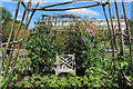 SE2754 : Seat among the Sweet Peas, Harlow Carr Gardens by Chris Heaton