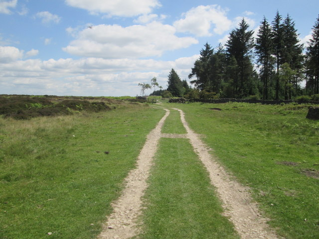 Looking  back  to  Steeple  Cross  and  Boltby  Forest