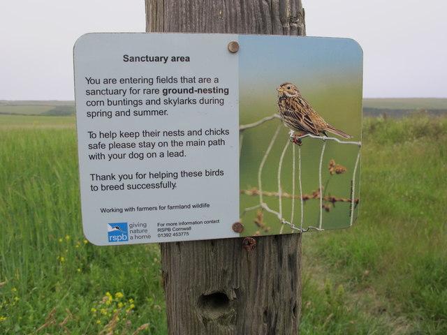 Notice, corn bunting and skylark nest sanctuary, Trevemedar