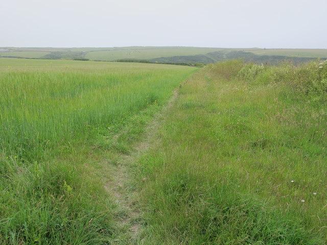 Path in ground-nesting bird sanctuary, Trevemedar