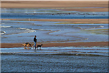 NU0052 : Sandstell Point at low tide by Walter Baxter