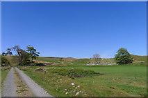 NC8861 : Track past Kirkton Cemetery by Tim Heaton