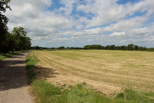 Grass field at Neasless Farm