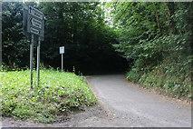 SU1760 : The track to Kepnal by David Howard