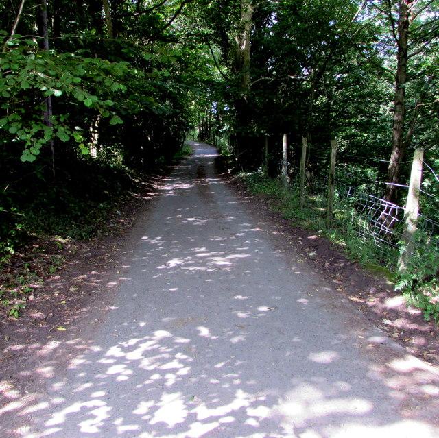 Mountain bike route, Talybont-on-Usk