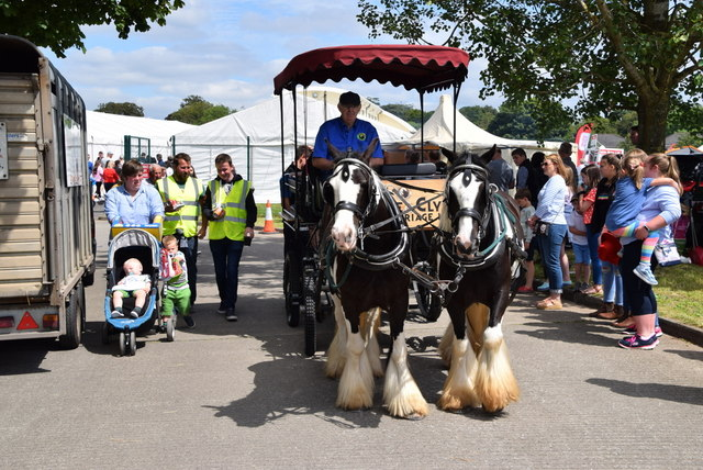Horses and cart - 179th Omagh Annual Agricultural Show 2019