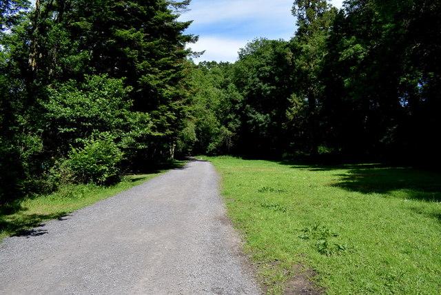 Path, Cladagh Glen