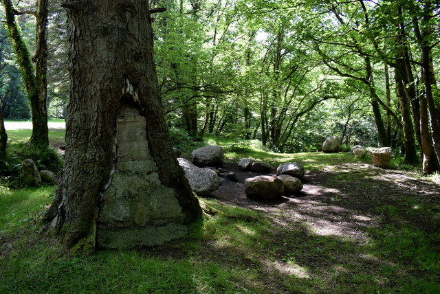 Woodland, Cladagh Glen