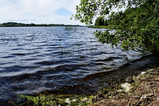 Gentle waves, Lough Erne