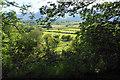 NY2525 : Farmland near Low Grove Farm by Bill Boaden
