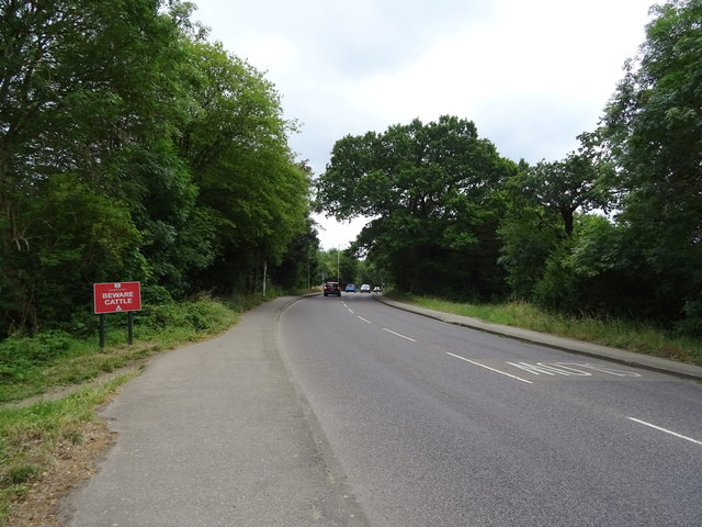 Whitehall Road, Chingford