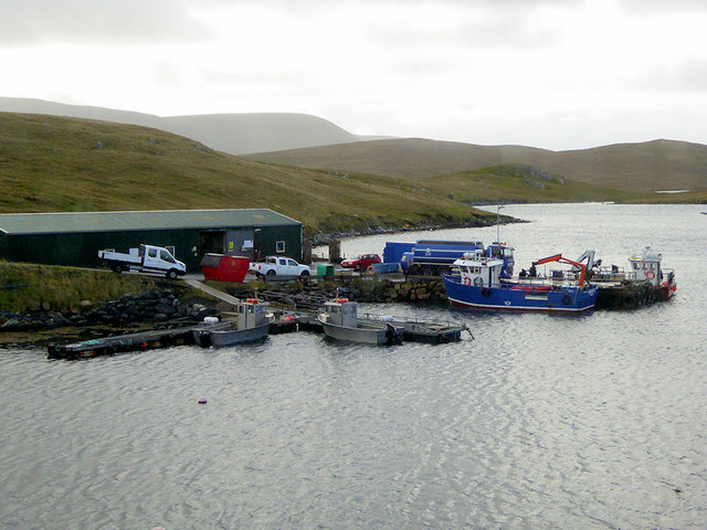 Piers for Mussel Farm