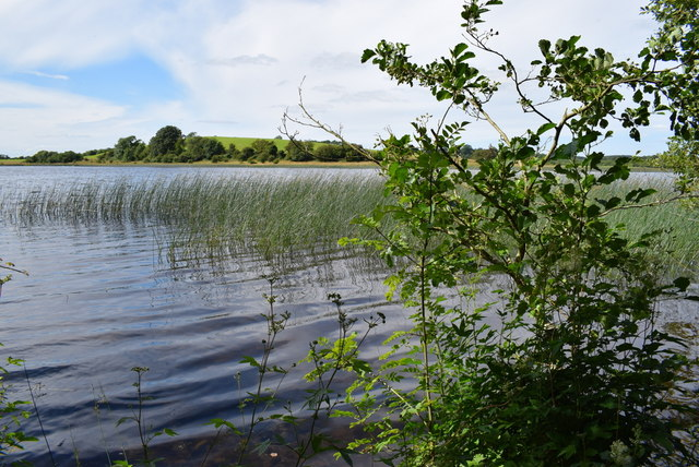 Ripples in the water, Lough Erne