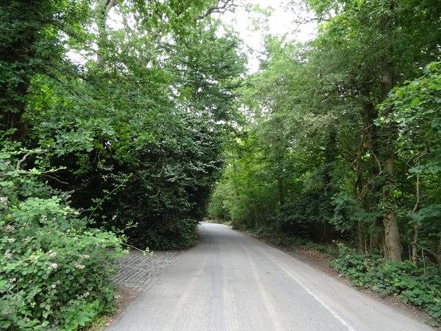 Debden Road, Debden Green