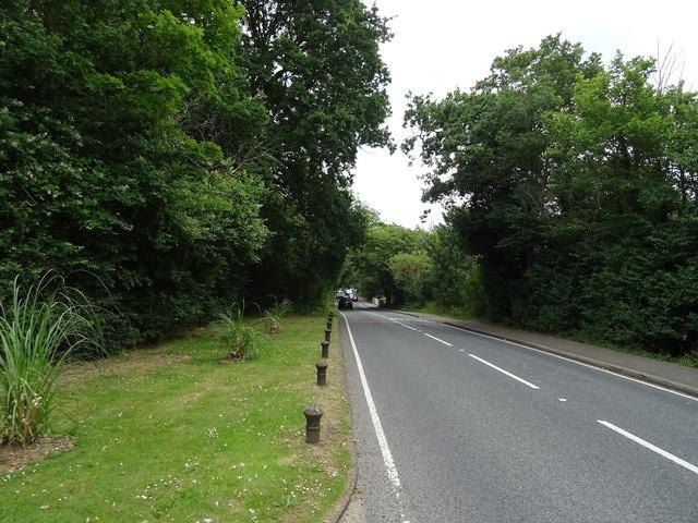 Debden Lane towards Theydon Bois