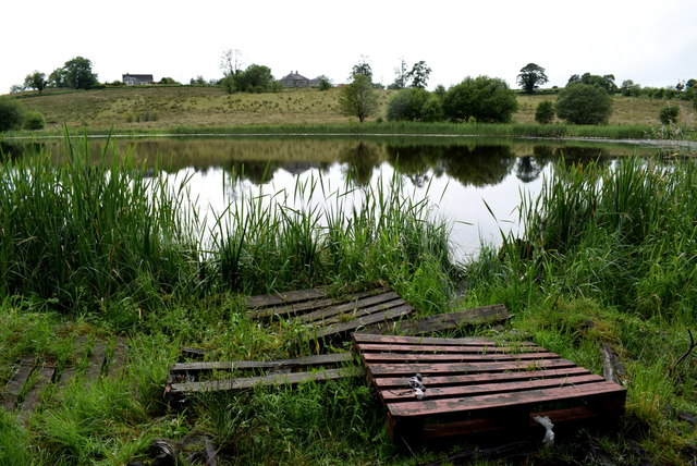 Pallets, Fireagh Lough