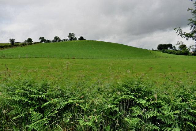 Green slopes, Rakeeragh