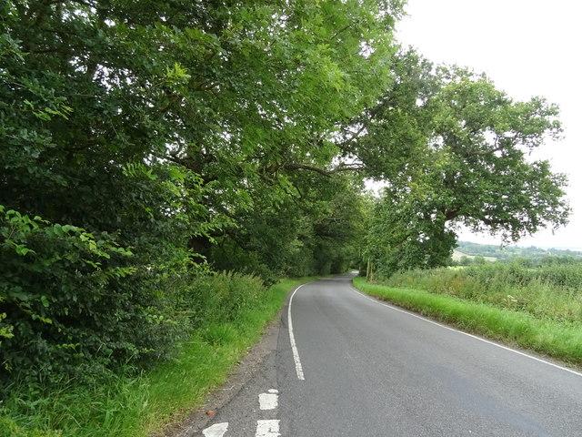Coopersale Lane towards Hobbs Cross