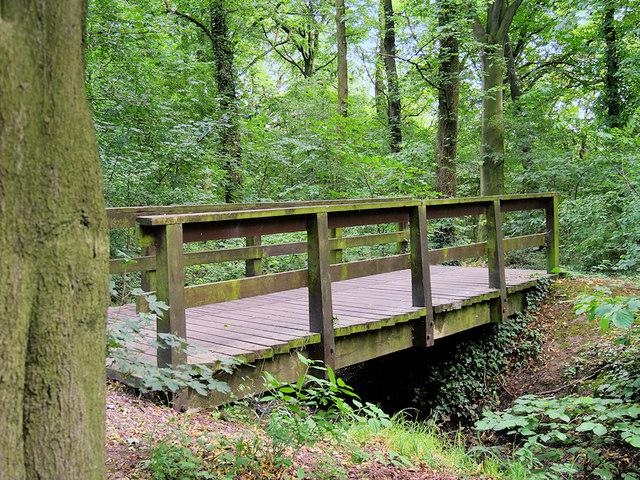 Bridge over Stream in Mary Ann Plantation
