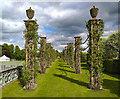 SJ4160 : Eaton Hall Garden by Jeff Buck