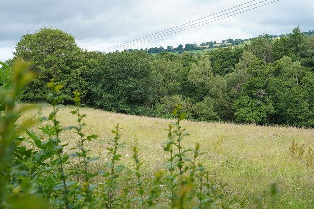 A field near Clifton