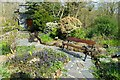 SH6541 : The Memorial Garden at Tan-y-Bwlch Station by Jeff Buck