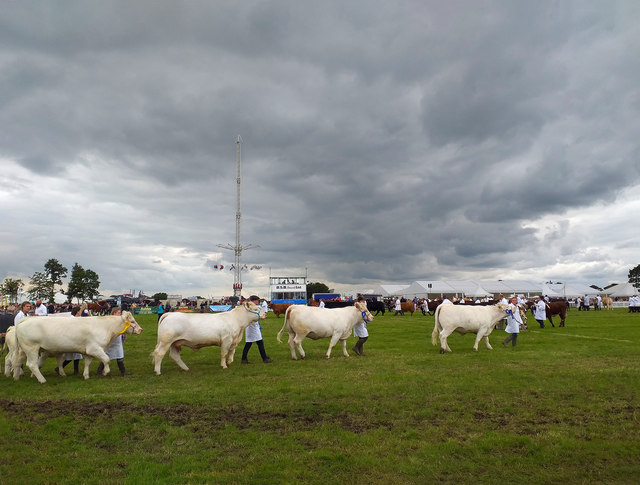 The Grand Parade, Royal Cheshire County Show 2019