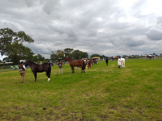 Equestrian Display at the Royal Cheshire County Show 2019