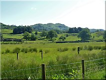 NY3304 : Elterwater to Skelwith Bridge [3] by Michael Dibb