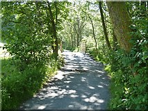 NY3304 : Elterwater to Skelwith Bridge [7] by Michael Dibb