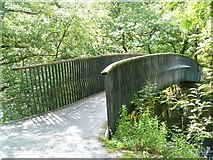 NY3403 : Elterwater to Skelwith Bridge [13] by Michael Dibb