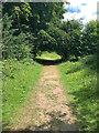 TQ0651 : Old Epsom Road near Wix Hill Lodge by Hugh Craddock