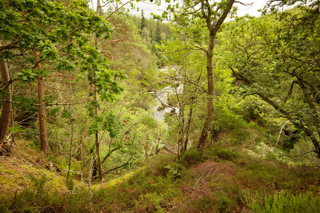 Looking towards Sluie Pool, River Findhorn