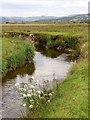 SN6964 : Afon Teifi  on Cors Caron in Ceredigion by Roger  Kidd