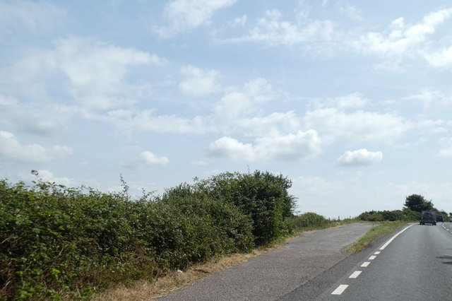Lay-by by A35, Chilcombe Hill