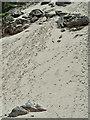 NG6848 : Sand slope below Meallabhan by Mick Garratt
