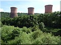 SJ6503 : Cooling towers, Ironbridge Power Station by Philip Halling