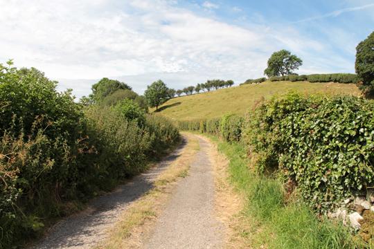 A walk along Kirkgate Lane (1)