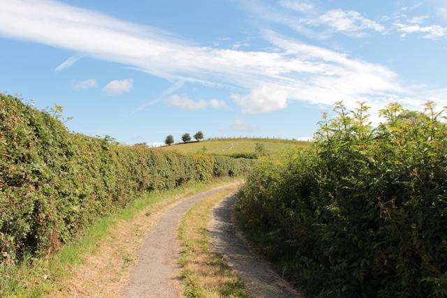 A walk along Kirkgate Lane (2)