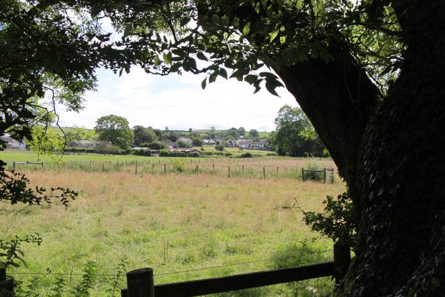A walk along Kirkgate Lane (4)
