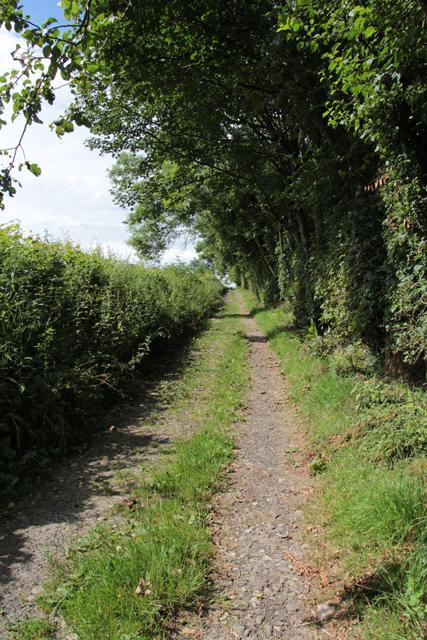 A walk along Kirkgate Lane (5)