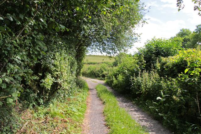 A walk along Kirkgate Lane (6)