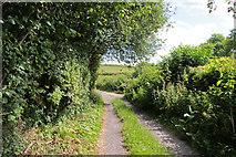 SD5273 : A walk along Kirkgate Lane (6) by Kate Jewell
