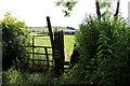 SD5273 : A walk along Kirkgate Lane (8) by Kate Jewell