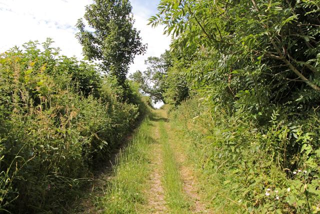 A walk along Kirkgate Lane (10)