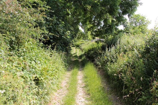 A walk along Kirkgate Lane (11)