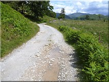 NY3103 : Track from Dale End to Elterwater [3] by Michael Dibb