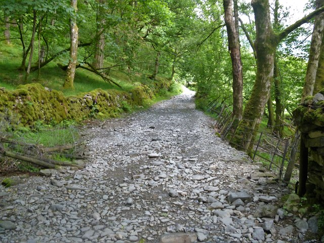 Track from Dale End to Elterwater [6]