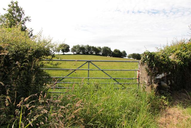 A walk along Kirkgate Lane: views from the highest point (12c)