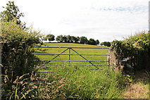 SD5273 : A walk along Kirkgate Lane: views from the highest point (12c) by Kate Jewell